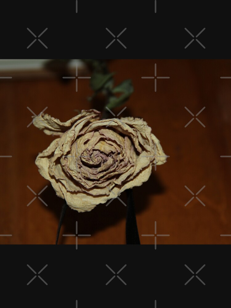 Dried Rose by meanwhileraven