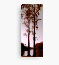 Two Souls - Trees on River Murray Canvas Print