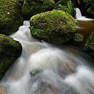 Flow to me.. by Robert Mullner
