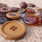 Button Brown Two by knoppie