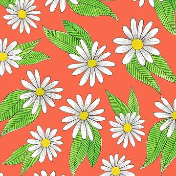 daisies with green leaves by swoldham