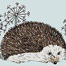 Hedgehog by Laura Maxwell