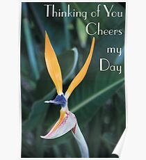 Thinking of you cheers my day Poster