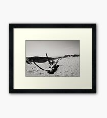 Pure nature in Holland Framed Print