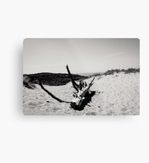 Pure nature in Holland Metal Print