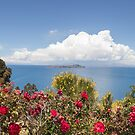 Bolivian Island Life by Ryan + Corinne Priest
