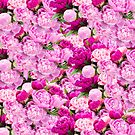 Pink Peonies Party by daphsam