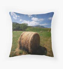 Rural Scene Throw Pillow