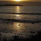 Lighthouse sunset by GeoGecko