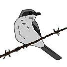 Loggerhead Shrike by GhostGiraffe