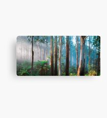 Sherbrooke Forest Canvas Print