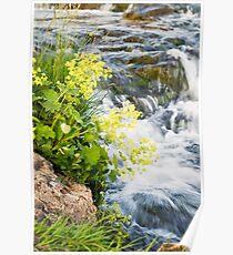Waterfalls in Ellida River #4 Poster