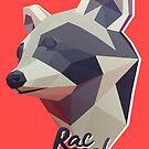 Raccoon (Raccool) by aartmoore