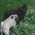 Look Poochie, Is That Mom Calling Us? by Linda Miller Gesualdo