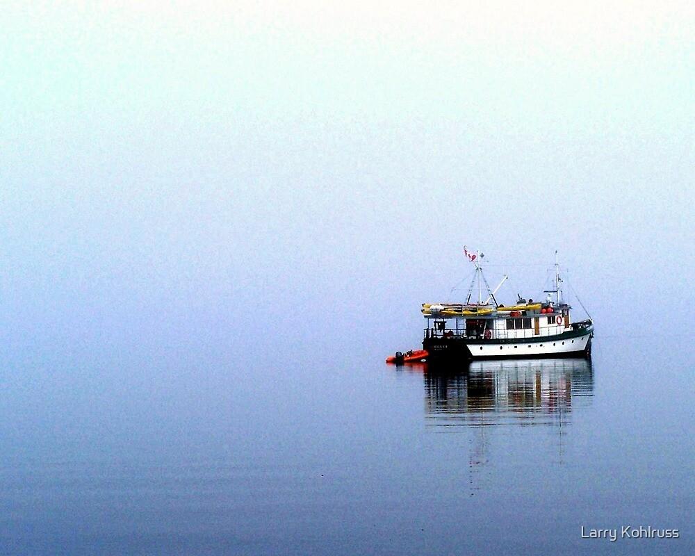 Alone In The Fog 1 by Larry Kohlruss