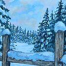 Canadian Snow Scene by Karen Scott