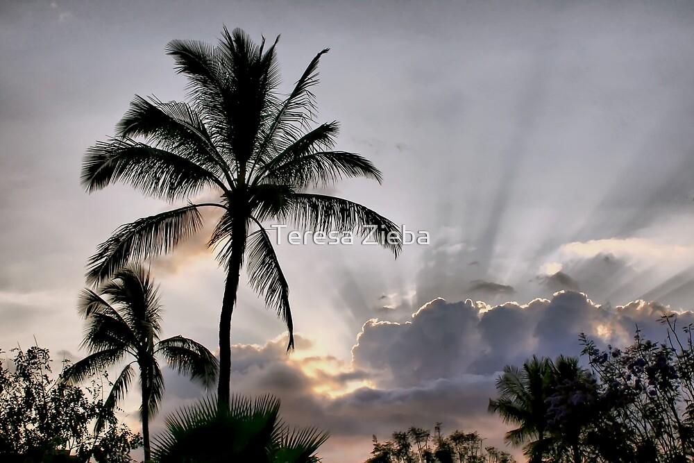 Hawaiian Sunbeams by Teresa Zieba