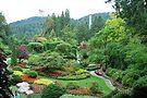 Butchart Gardens by Cathy Jones