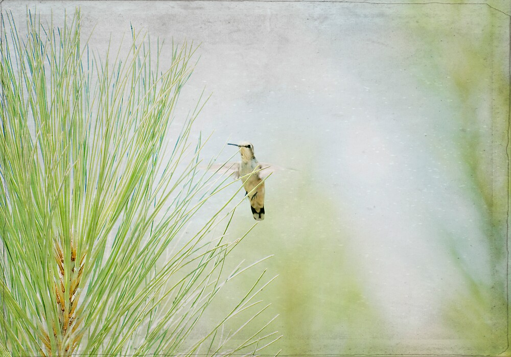 """""""Upon the Wings of an Angel"""" by Susan Gary"""