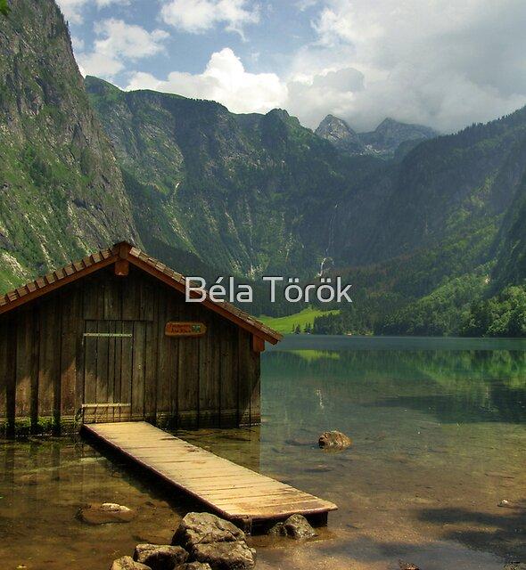 Obersee by Béla Török
