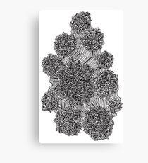 Mazed Canvas Print