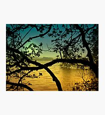 Tandlewood Tales Photographic Print