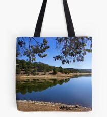 Quemado Lake Tote Bag