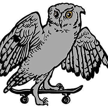 Owl on skateboard  by amelielegault