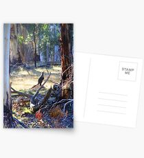 Wallaby in the Bush Postcards