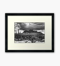 Supes with Cactus Framed Print