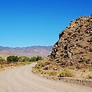 Lonely Nevada Dirt Road by Jared Manninen