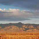 Nevada Mountain Range Cast in Shadow by Jared Manninen