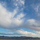 The High Nevada Desert by Jared Manninen