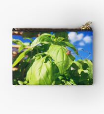 Daddy Long Legs on Basil Studio Pouch