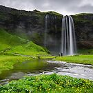 Seljalandsfoss by Peter Clarke