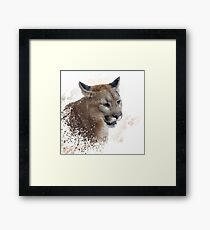 Florida panther or cougar digital painting Framed Print