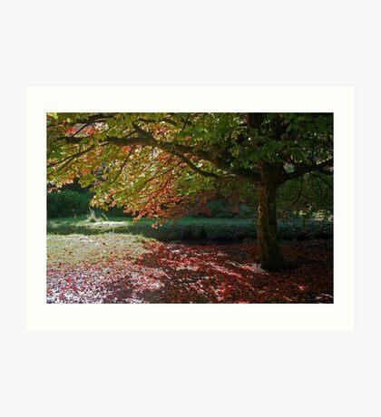 Autumn Colour, Bournemouth Gardens Art Print