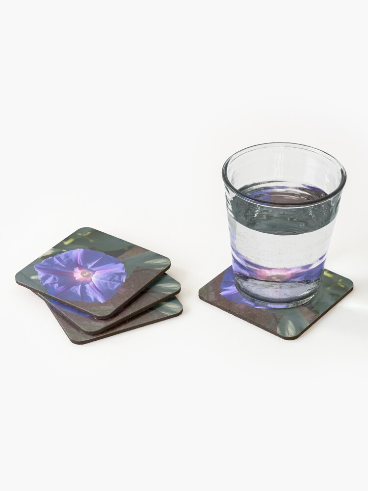 Alternate view of Morning Glory from A Gardener's Notebook Coasters (Set of 4)