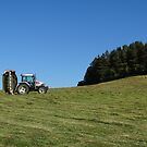 Hillside Mowing by Barrie Woodward
