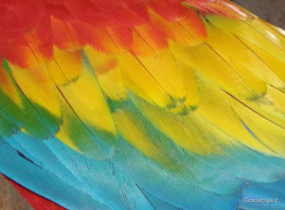 Rainbow by Goldenspirit