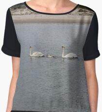 Swans, swan family, water, bay, morning, nature, the mystery of nature, #Swans, #SwanFamily, #water, #bay, #morning, #nature, #MysteryOfNature Chiffon Top