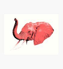 Pink Elephants Art Print