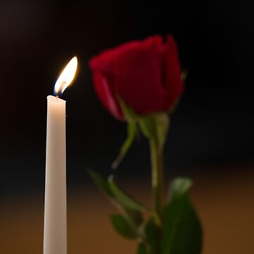 Candlelight with a single red rose by SiliconValleyUS