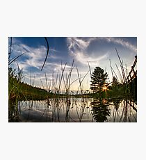 Sunset from the reeds  Photographic Print