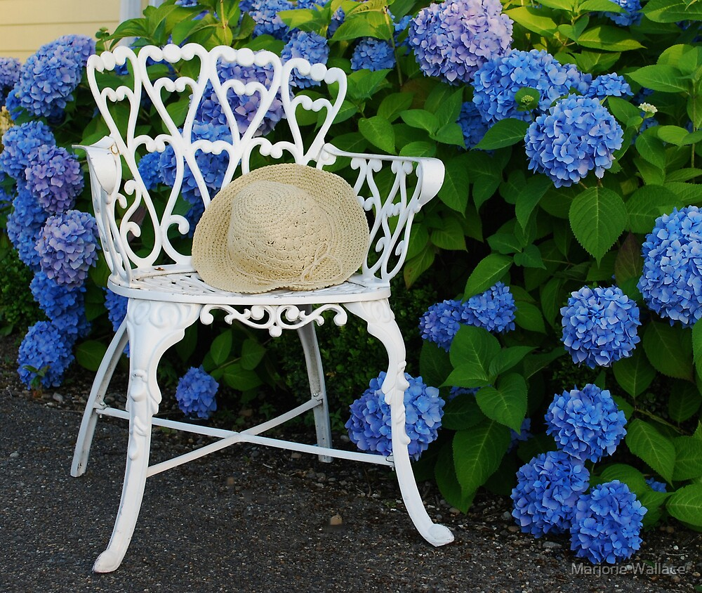 Straw hat, blue Hydrangeas and a Patio chair by Marjorie Wallace