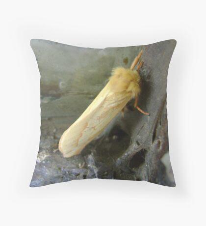 Moth/Butterfly? Throw Pillow