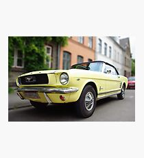 Blond Mustang Photographic Print