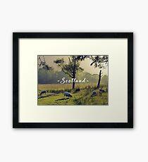 Summertime Scottish Scenery Framed Print