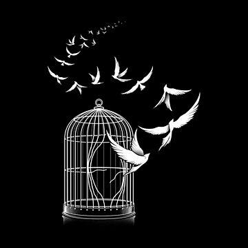 Freedom by tobiasfonseca