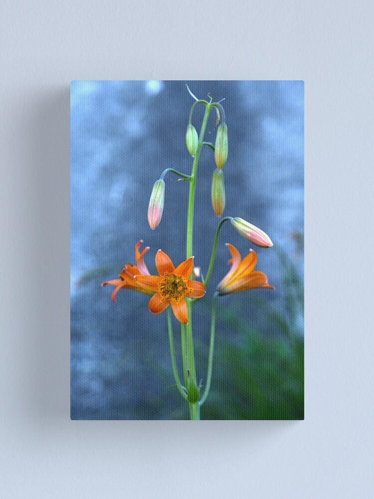 Alternate view of Sierra Tiger Lily (Lilium parvum) Canvas Print